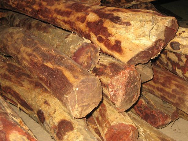 Properties of Sandalwood